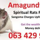 make money with spiritual rats for money spell caster in congo +27634299958