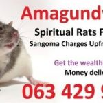 I have used money spell caster in south Africa, a sangoma with spiritual rats +27634299958